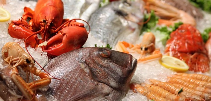 Image result for A Guide to Buying Frozen Fish and Seafood Online